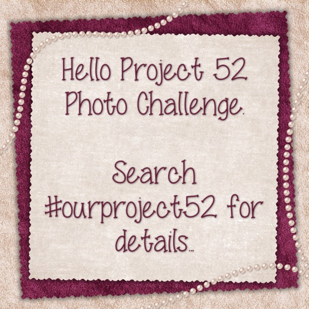 #project52 - 5