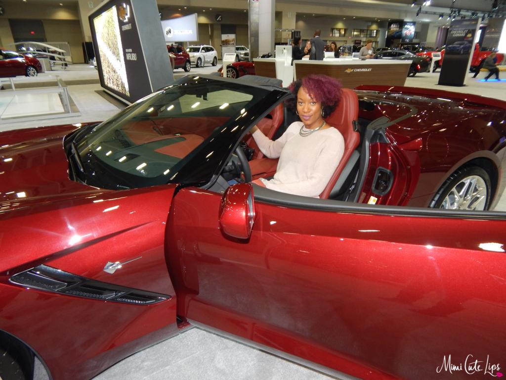 Washington Auto Show Media Day 12
