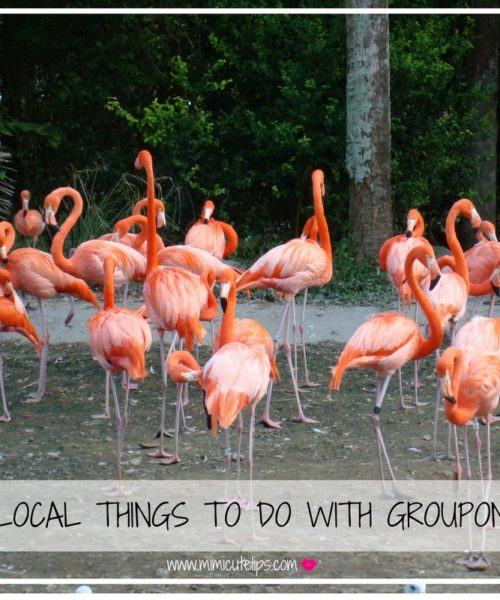 LOCAL THINGS TO DO WITH GROUPON