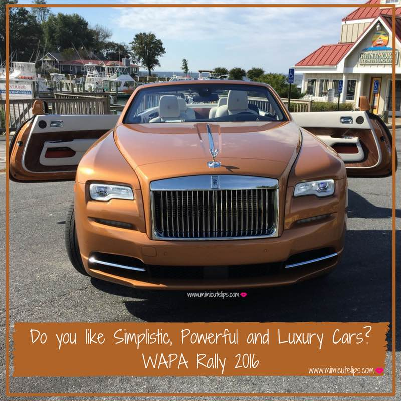 do-you-like-simplistic-powerful-and-luxury-cars wapa rally-2016