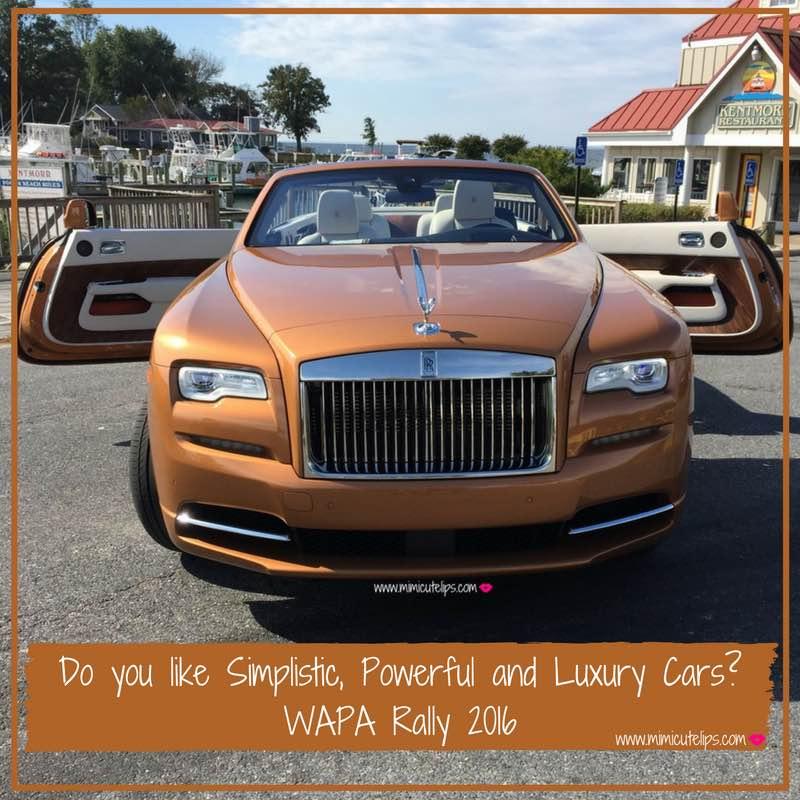 do-you-like-simplistic-powerful-and-luxury-cars wapa rally-2016