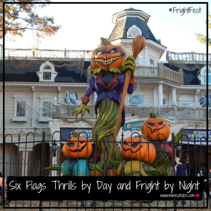thrills-by-day-and-fright-by-night-fightfest