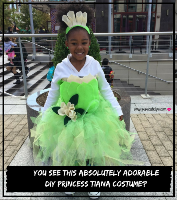 you-see-this-absolutely-adorable-diy-princess-tiana-costume