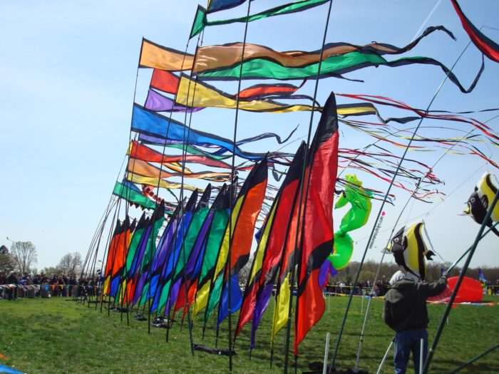 DC Kite Festival family activities in dc