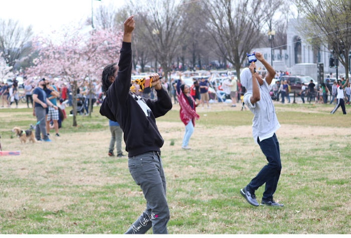 Washington DC Kite Festival